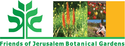 Friends of Jerusalem Botanical Gardens website